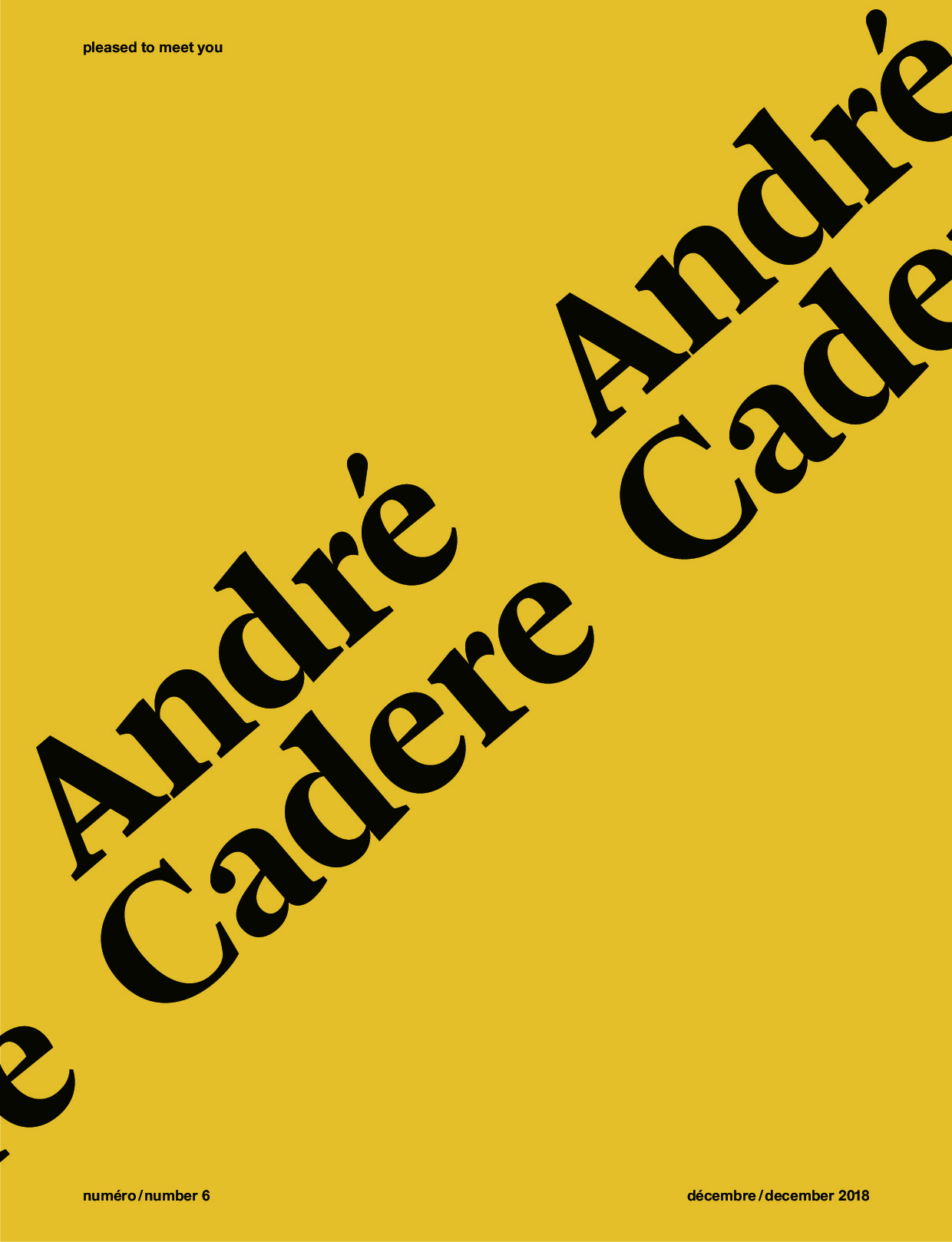 Pleased to meet you 6 - André Cadere